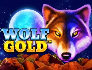 Wolf Gold Logo Gokkasten review